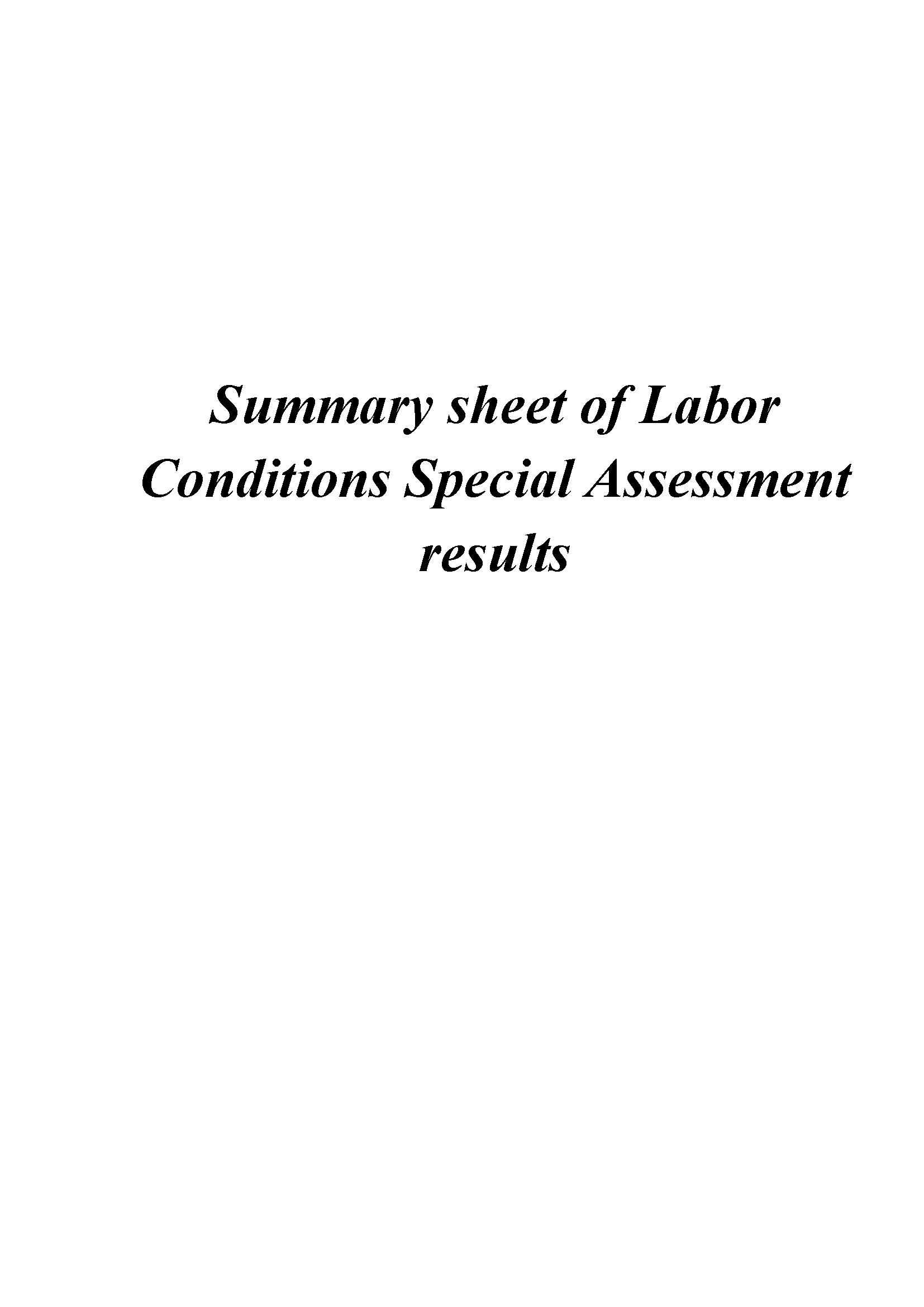 Summary sheet of Labor Conditions Special Assessment results